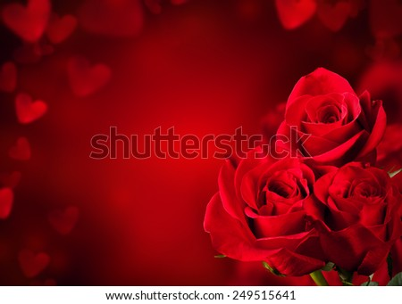 Bouquet of red roses blossoms with free space for text