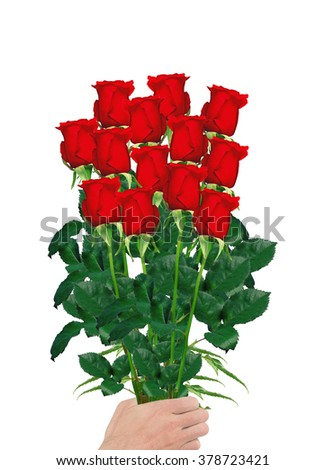 bouquet  of red roses in hand closeup isolated on white background - stock photo