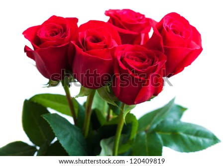 Bouquet of red roses on a white background - stock photo