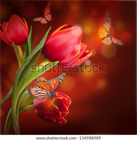 Bouquet of red tulips against a dark background and butterfly - stock photo