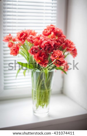 Bouquet of red tulips in a glass vase on  on the window with blinds