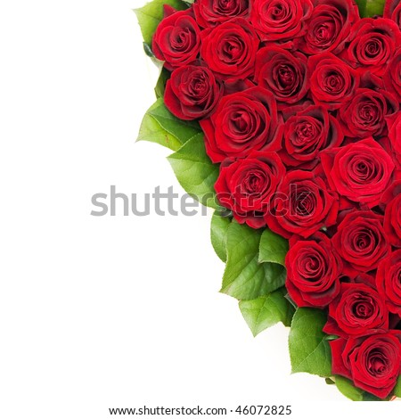 bouquet of roses, red roses - stock photo