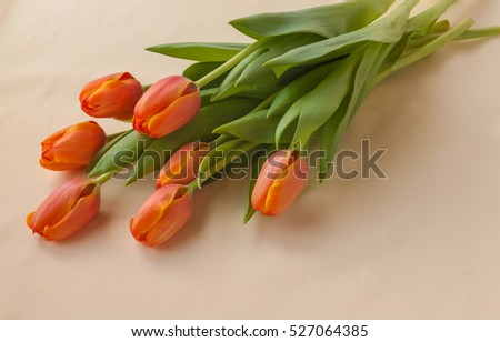 Bouquet of seven orange tulips on a yellow background