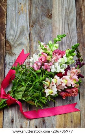 bouquet of snapdragon (Antirrhinum majus) on vintage wooden board - stock photo