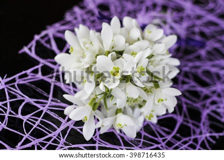 bouquet of snowdrops - stock photo