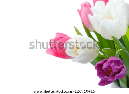 Bouquet of spring flowers isolated on white with copy space - stock photo