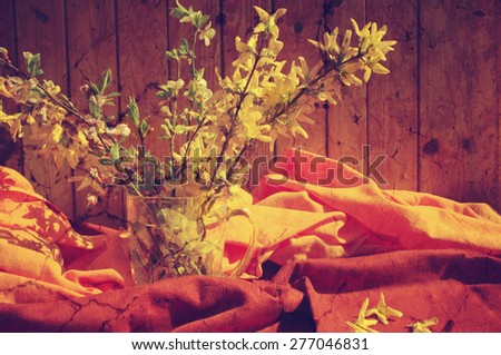 Bouquet of spring yellow Forsythia colors on a fabric red and orange background in vintage style. Spring still life.  - stock photo