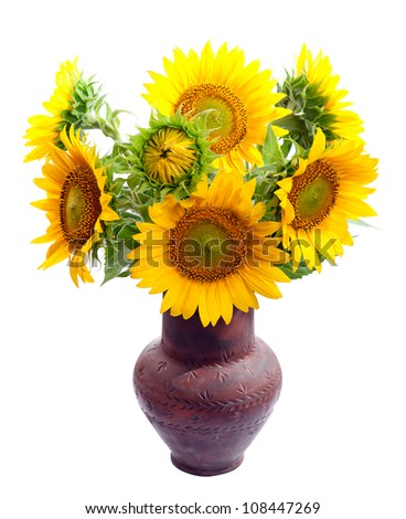 Bouquet of sunflowers in a clay vase. isolation - stock photo