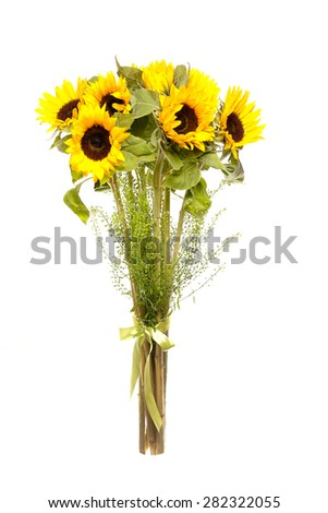 bouquet of sunflowers on white background - stock photo