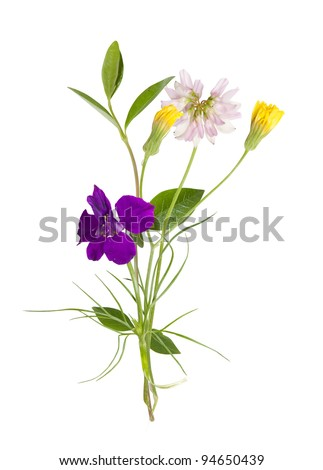 bouquet of the field (wild) flowers, easter colors, isolated - stock photo