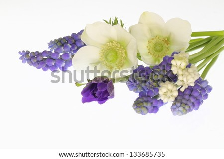 Bouquet of the off-white anemone and grape hyacinth