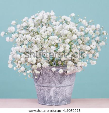 Bouquet of  tiny gypsophila (baby's-breath) flowers in vintage metal bucket - stock photo