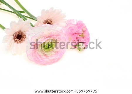 Bouquet of Transvaal daisy and Persian buttercup