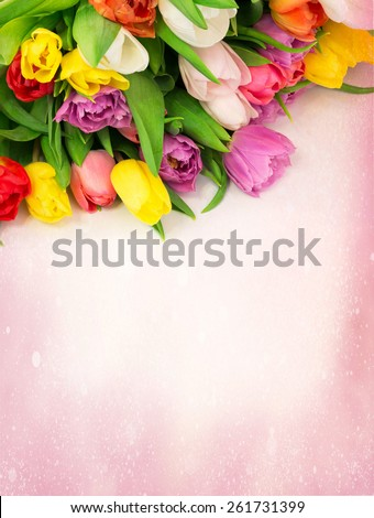 bouquet of tulips flowers on a drawing background vintage retro selective soft focus toned photo - stock photo