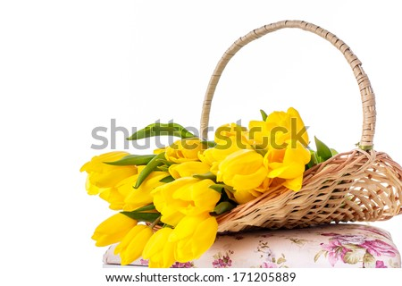 bouquet of tulips in a basket isolated on a white background, on March 8, International Women's Day, Mother's Day, Valentine's Day - stock photo