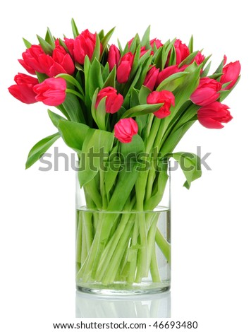 Bouquet of tulips in the vase isolated on white background - stock photo