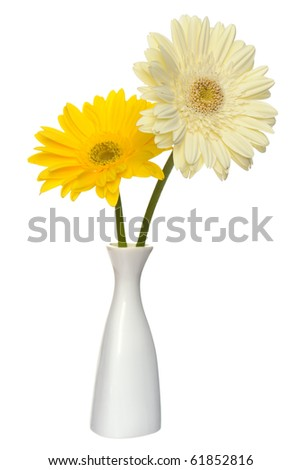 Bouquet of two daisy-gerbera flowers in white china vase  isolated on a white background - stock photo