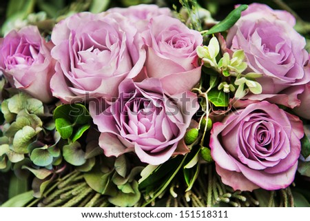 bouquet of violet  beautiful roses - stock photo