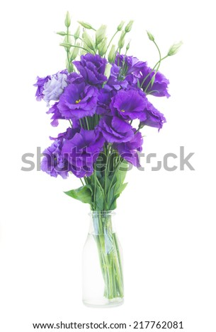 bouquet  of violet eustoma flowers isolated on white - stock photo