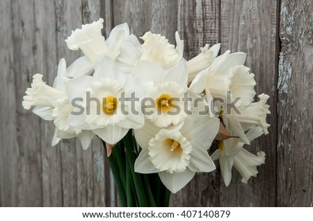 Bouquet of white daffodils on dark old paint wooden fence background