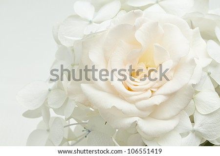 bouquet of white flowers - stock photo
