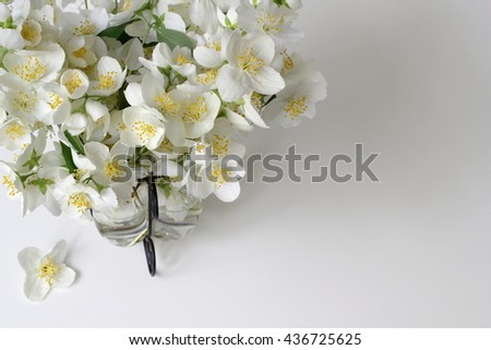 Bouquet of white jasmine flowers in a vase. High angle view. Corner of frame from white jasmine flowers. Decorative floral border with mock-orange jasmine - Philadelphus flowers. Photo from above. - stock photo