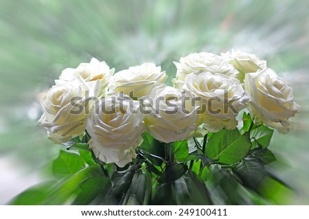 Bouquet of white roses - stock photo