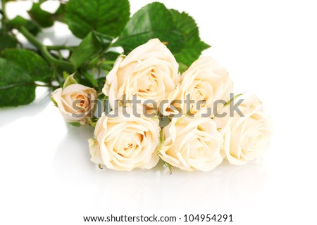 Bouquet of white roses isolated on white