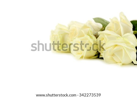 Bouquet of white roses on white background - stock photo