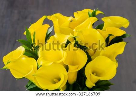 Bouquet of yellow Calla lilies (Zantedeschia) over dark wooden background - stock photo