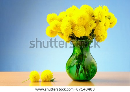 bouquet of yellow chrysanthemums in a vase on a blue background - stock photo