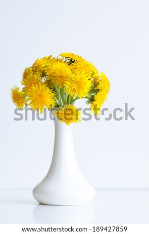 bouquet  of  yellow dandelions  in white  vase on white background  - stock photo