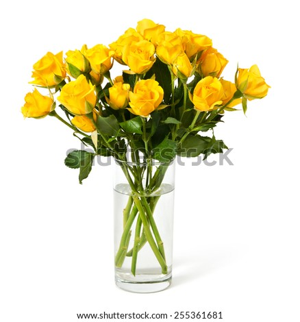 bouquet of yellow roses in a glass isolated on a white - stock photo