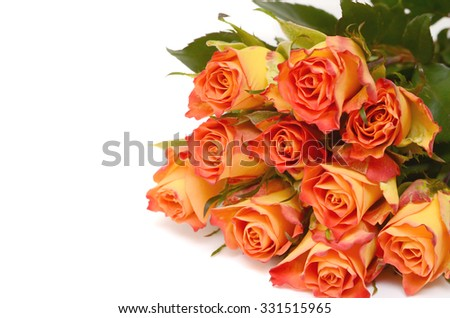 Bouquet of yellow roses isolated on white. Copy space.  - stock photo