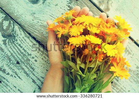 Bouquet of yellow summer flowers in female hands against a wooden surface. Bouquet from a marigold. Calendula flowers. Festive bouquet - stock photo