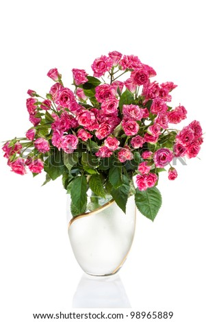 Bouquet Roses in vase, Isolated on white background