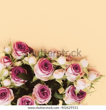 Bouquet Roses on a yellow background. Minimalism Fashion - stock photo