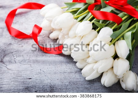 Bouquet white tulips with red ribbon.Flowers of spring and love.Valentine's day.Happy Mothers Day.Copy space.selective focus. - stock photo