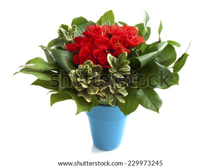 Bouquet with red roses in blue vase isolated over white
