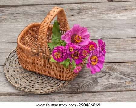Bouquet with zinnia in a basket on an old wooden table - stock photo