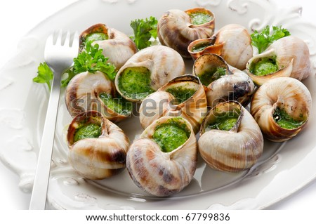 bourguignonne snail au gratin on withe - stock photo