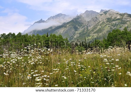 Bow Valley Parkway Summer Scenic Horizontal With Copy Space - stock photo