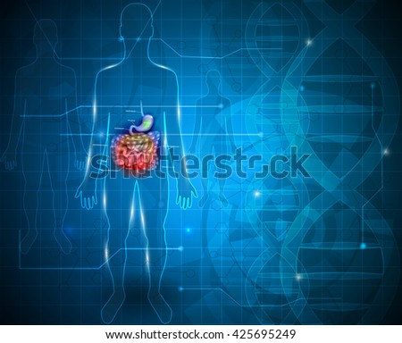 Bowels and stomach abstract scientific background - stock photo