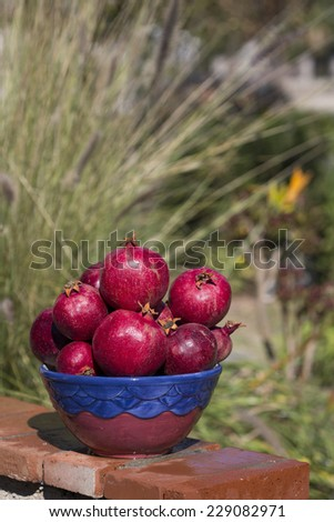 bowl full of pomegranates with blurred outdoor background, vertical crop