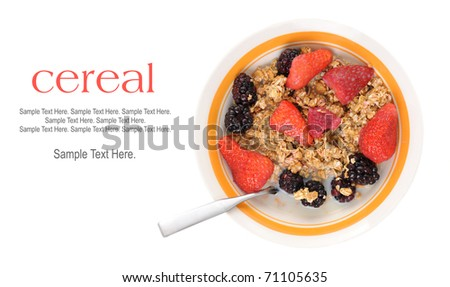 Bowl of Cereal and Fruit with Text Space to the left. - stock photo