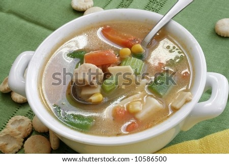 Bowl of chicken soup and vegetables - stock photo