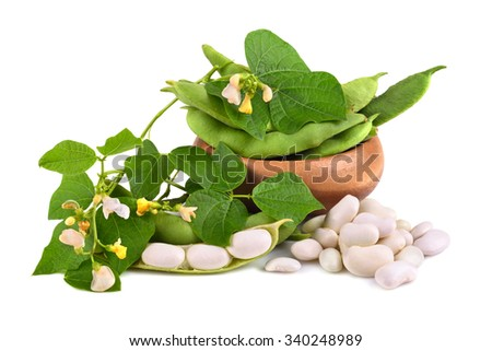 Bowl of edamame soy beans with flowers and leaves on white background - stock photo