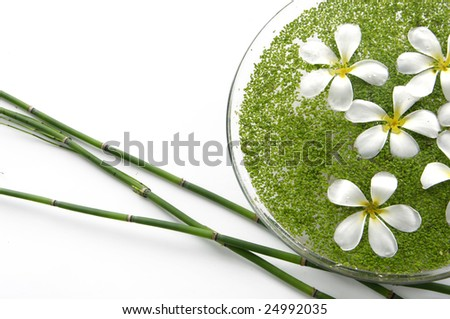 bowl of Frangipanis and green duckweed with bamboo - stock photo