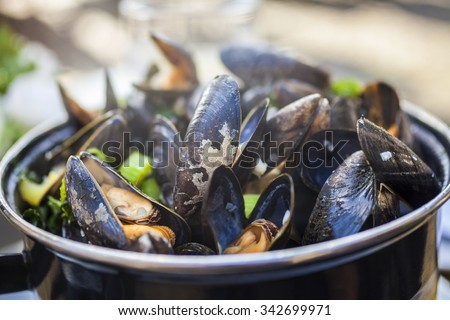 Bowl of fresh mussels moules mariniere - stock photo