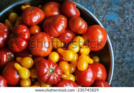 Bowl of freshly picked red and yellow tomatoes from the garden - stock photo